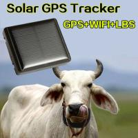 China Mini Solar Animal Gps Tracker , Real Time Animal Tracking Device For Cattle Horse Camel on sale