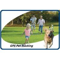 Quality GPS Pet Tracking wholesale