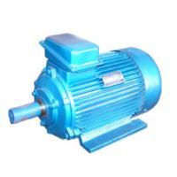 Quality 380V 415V Customized 3 Phase Asynchronous Motor For Hoist , YZ Series wholesale