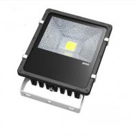 Quality AC 220 Volt Outdoor Led 50 W Flood Lighting Fixtures 60Hz , Aluminum Alloy Body wholesale
