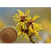 Quality Hamamelis Virginiana Extract Cosmetic Raw Materials For Moisturize / Skin Whitening wholesale