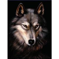 Cheap 3D Lenticular Picture/Image / Wolf / 3D Lenticular Printing for sale