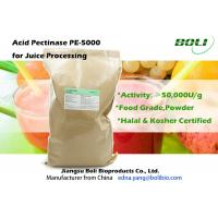 Quality High Concentration Juice Enzymes , Industrial 50000 U / g  Pectinase Enzyme wholesale