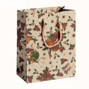 China Shopping gift handbag printed custom design recycle kraft paper bag wholesale on sale