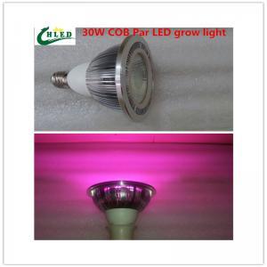 China E27 Led grow light 20W/30/W/40W COB led Grow Lights full spectrum 380-840nm Indoor plants growing lights on sale
