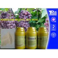 Quality Garden Safe Apple Tree Fungicide Kresoxim - Methyl 25% Wdg 143390-89-0 wholesale