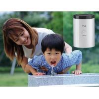 Quality Durable Hydrogen Water Dispenser , Women Home Facial Spa Machine wholesale