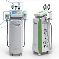 China Coolsculpting Freezing Fat Cryolipolysis Machine Leg , Arms, Belly Fat Removing on sale