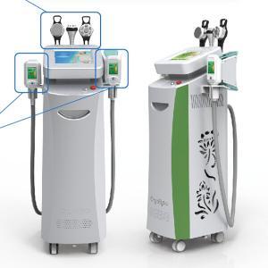 China Weight losing machine freezing fat machine cryo cryolipolysis belly abdomen leg fat remova on sale