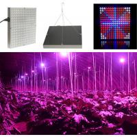 Quality 45 W Full Spectrum LED Grow Lights For Hydroponics , 50~60Hz Frequency wholesale