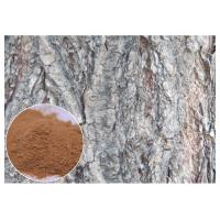 Quality White Willow Bark Natural Anti Inflammatory Supplements Relieve Headache HPLC Test wholesale