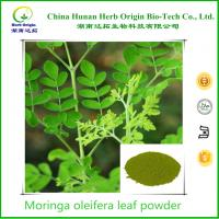 China High quality moringa oleifera leaf powder for anti inflammation from Herb Origin on sale