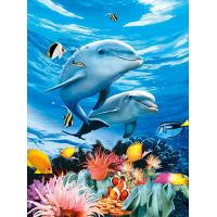 Quality BSCI Lenticular 3D Pictures For Hotel Decoration / 3D Animals Photos wholesale