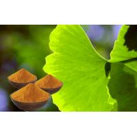China Pharmaceuticals Ginkgo Biloba Botanical Herbal Extract For Memory enhance on sale