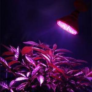 Quality MR16, GU10 AC / DC12V 15w PVC, Aluminum Epistar LED Panel Grow Lights For Leafy Flowers wholesale