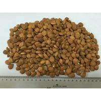 China Nuts& Kernels :Bitter Apricot Kernels &Debitterizing Apricot kernels on sale