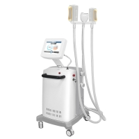China 60mins Cryolipolysis Fat Freeze Slimming Machine For Tummy on sale