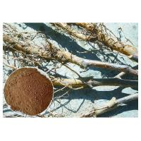 Quality Apple Tree Root Pure Natural Plant Extracts , Extraction Of Medicinal Plants CAS 60 82 3 wholesale