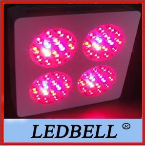 Quality 60 PCS x 3W Penetrator Led Plant Growing Lights , 4 Module LED grow light wholesale