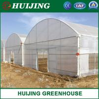 Quality Quality Assured Agriculture Plastic Large Multi Span Greenhouse for Sale wholesale