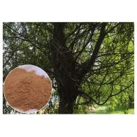 Quality Brown Antimicrobial Plant Extracts , Salicin White Willow Bark Extract Relieving Headache wholesale