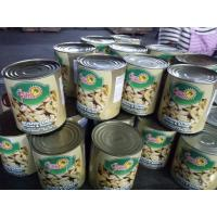 Quality Canned Whole Mushroom In Tins 24*425ml / NW. 425g DW. 200g 180g or Big Size wholesale