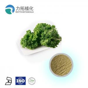 Quality Brassica Oleracea Organic Plant Powder Light Green Fine Powder Anti-Inflammatory wholesale