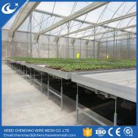 Quality Greenhouse bench rolling bench ebb and flow tables from HEBEI wholesale