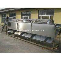 Quality Automatic Onion Water Washing and Grader Line wholesale