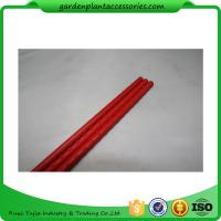 Quality PE Coated Metal Garden Plant Stakes 8mm Diameter , 75cm Length Metal Garden Stakes  Lengt  Dia:11mm  Dia:11mm wholesale