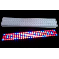 Quality 50 W SMD LED Tube Grow Lights 900mm Length With 50~60Hz Frequency wholesale