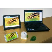 Quality High Speed Cameras HD720 5.0MP USB WIFI Microscope For iPad Android PC--W5 wholesale