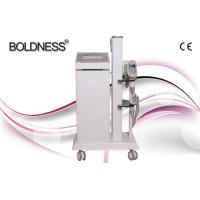 Quality Painless Beauty Salon Cryolipolysis Slimming Machine , Multifunction Beauty Equipment wholesale