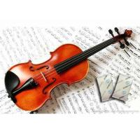 Quality NEW Humigic Super Acoustic Violin Case Humidifier Powder Apperance wholesale