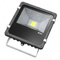 Quality 30W Pure White 5000K Outdoor Led Flood Lights Energy Saving , AC 120V 130V wholesale