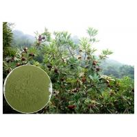 Quality Myricetin 10% - 95% Natural Anti Inflammatory Supplements Bayberry Root Bark Powder wholesale