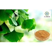 China Bulk Ginkgo Biloba Extract Brown Powder 24/6 Medical Food Grade Of Regulate Blood Lipids on sale