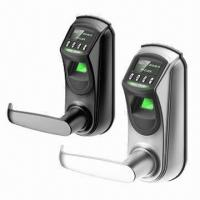 Quality Hotel and Office Finger Print Locks with OLED Display wholesale