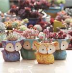 Quality Cartoon Cute Mini Desktop fox shaped Ceramic Animal Pot Succulent Planter wholesale