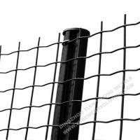 Quality Electro Galvanised Wire Mesh Panels Green Powder Coating With Barb Top wholesale