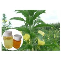 Quality Women Menopause Natural Dietary Supplements GLA 10% Yellow Evening Primrose Oil wholesale