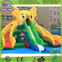 China Guangzhou QinDa Inflatable Slide for Pool Water Slides for Sale Inflatable Elephant Slide on sale