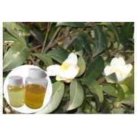 Quality Fatty Acid Oil Natural Cosmetic Ingredients From Camellia Oleifera Seed wholesale
