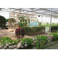 Quality Fish Farming Garden Glass Greenhouse Strong Drainage Capacity 8m*4m Dimension wholesale