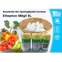 Cheap Ethephon 48% SL Plant Growth Regulators To Promote Pre - Harvest Ripening 16672-87-0 for sale