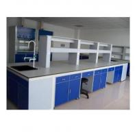 Quality Steel Structure Medical Lab Table With Cabinet Storage Epoxy Resin Powder Coated wholesale
