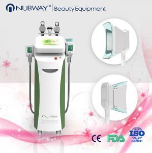 China 5 handles cavitation rf cryolipolysis ultrasound cavitation weight loss machine on sale
