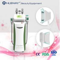 China cryolipolysis slimming machine fat freezing machine with strong cooling on sale