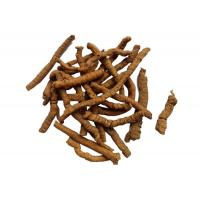 Quality Polygala Root P.E.  10:1TLC  effect on Insomnia, dream-disturbed sleep,forgetful-ness wholesale