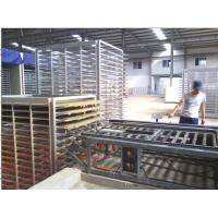China Fully Auto Mixing System Water Proof Sandwich Panel Gypsum Board Production Line on sale